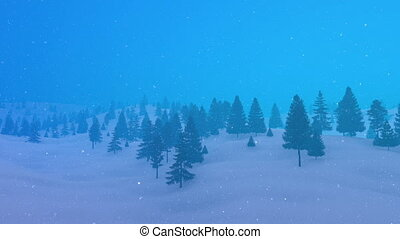 Winter mountain fir forest in bad weather 4K