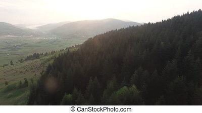 Aerial view. Dawn over the hills with dense forest - Sun has...