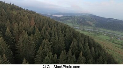 Magnificent landscape of the wooded mountains. Aerial view
