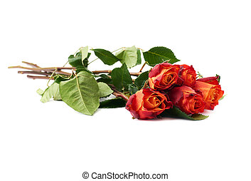Bouquet of roses over white isolated background