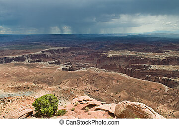 Grand View Point, Canyonlands National Park, Utah