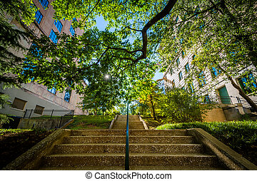 Staircase and buildings in downtown Asheville, North...