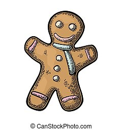 Gingerbread man. Isolated on white background. Vector...