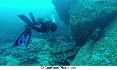 Diving in the red sea a group of divers submerged.