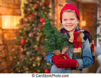 Boy Wearing Scarf In Christmas Decorated Room Holding Small Tree