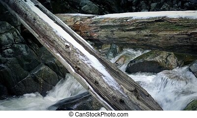 Large Logs Over River In Snowy Wilderness - Logs with snow...