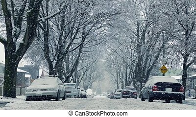 Cars And Houses In Heavy Snowfall - Snow falling on car...