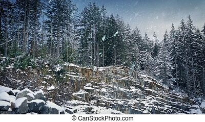 Rocky Forest Slope In Heavy Snowfall - Rugged wilderness...