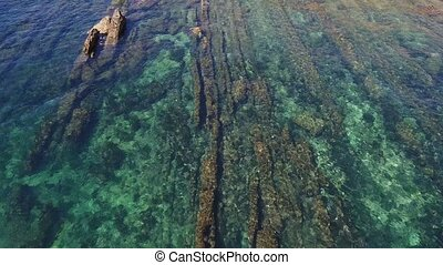 Aerial. Footage a reef the water is clean, the beach...