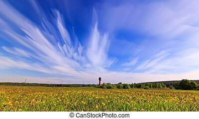 White clouds blurred over a field of dandelions. Time Lapse...