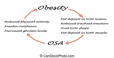 Relationship between OSA and obesity
