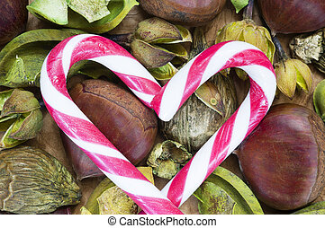 Raw chestnuts and candy canes background - A background with...