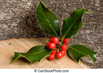 Holly on wood