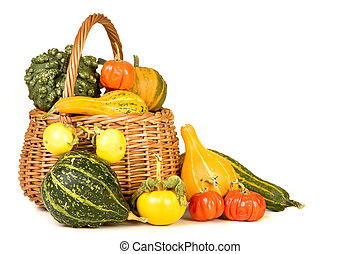 Thanksgiving basket filled with gourds on a white background