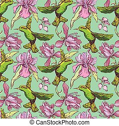 Seamless pattern. Colibri and flowers on green background....