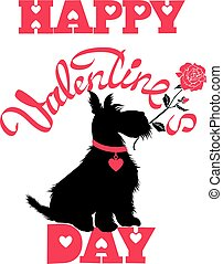 Holiday card. Calligraphic hand written text Happy Valentine`s Day and scottish terrier dog silhouette with rose, isolated on white background.