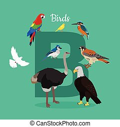 Birds with Letter B Isolated. ABC, Alphabet. - Birds with...