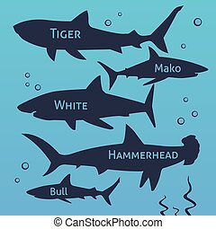Shark vector silhouettes set. Sea fish, animal swimming, fauna illustration.