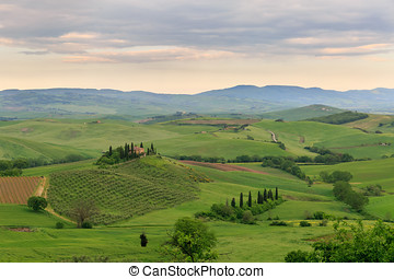 Tuscany hillside in San Quirico D'Orcia