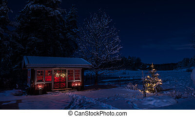 Winter night - Moonlighted view of the snowy garden house...