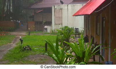 Tropical downpour, slow motion - Bungalow in the rain forest...