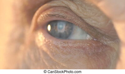 Blue eye of middle-aged woman. Close up - Blue eye of a...