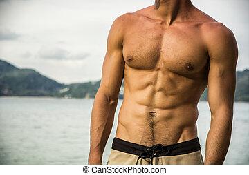 atak, Muskularny, kostium kąpielowy, przedstawianie, silny,...