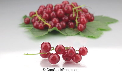 Closeup red currant on a background made of red currant.