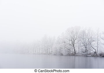 Winter fog on the bank of icy lake. Frozen trees.