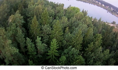 fly over forest and water