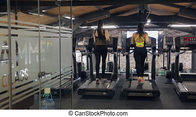Back view of slim athlete women running on a treadmill in a...