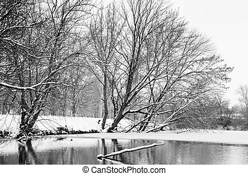 Winter landscape of snow-covered trees and river