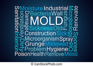 Mold Word Cloud on Blue Background