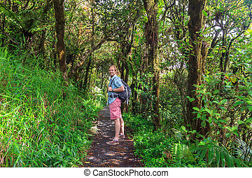 Jungle hike tourist - Adventurous tourist hiking in the...