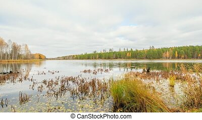 Low clouds over the marshy pond. Autumn, Russia. HDR. Time...