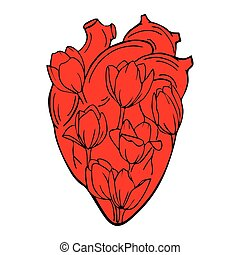 The human heart with tulips INSIDE