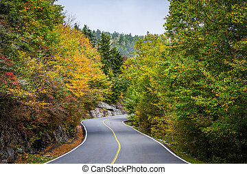 Early autumn color along the road to Grandfather Mountain,...
