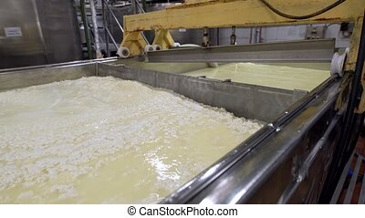 Dairy product tanks with contents - View of milk product...