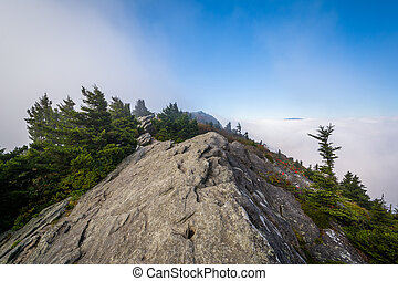 Rocky outcrop and fog, at Grandfather Mountain, North...