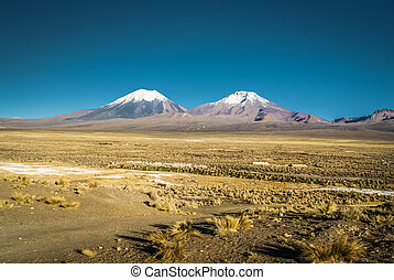 Parque Nacional Sajama - Photo of lonely wilderness and...