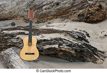 guitar on weathered driftwood - six string guitar in beach...