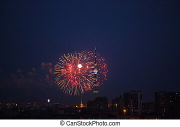 Firework in Saint Petersburg - Firework in night sky of...