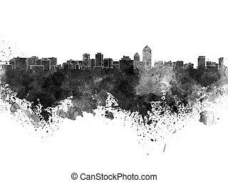 Albuquerque skyline in black watercolor