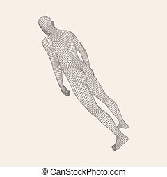 Man Stands on his Feet. Human Body Wire Model.