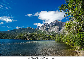 Greenery in Bariloche - Rich greenery surrounding river in...