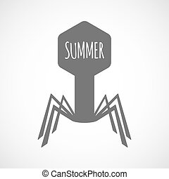 Isolated virus with    the text SUMMER