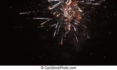Fireworks in a dark sky, HD