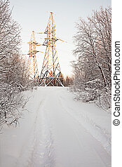 High-voltage support in winter wood