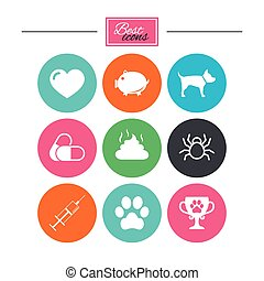 Veterinary, pets icons. Dog paw, syringe signs. -...