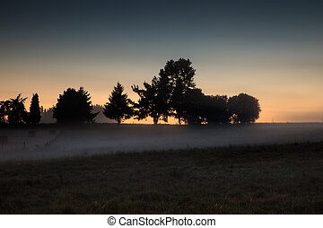Sunrise in the Galicia countryside - Trees silhouette,...